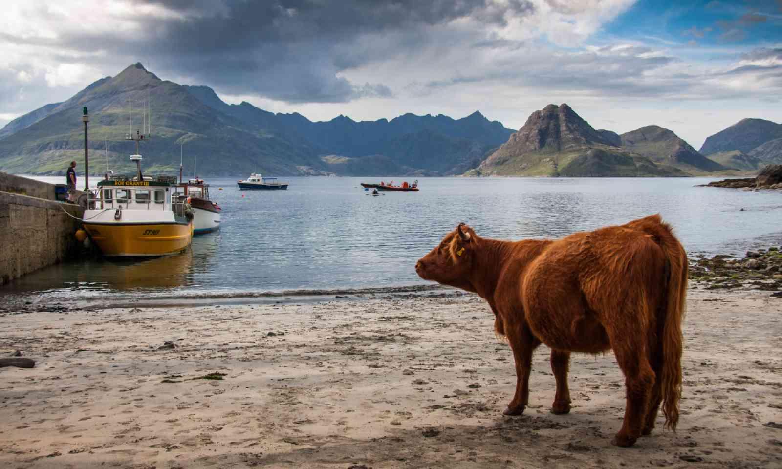 Port Elgol, Scotland (Shutterstock)