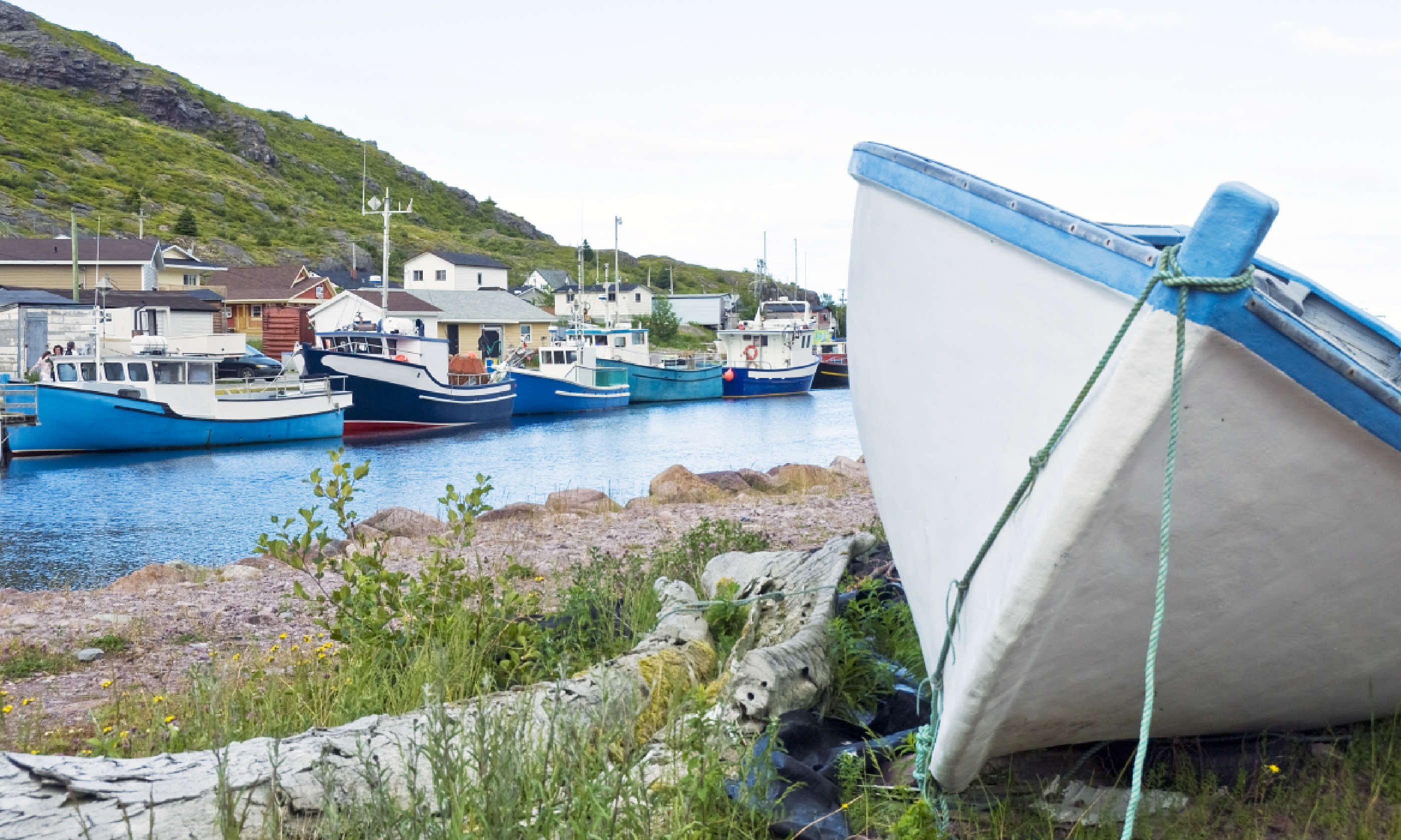 Petty Harbour (Shutterstock)