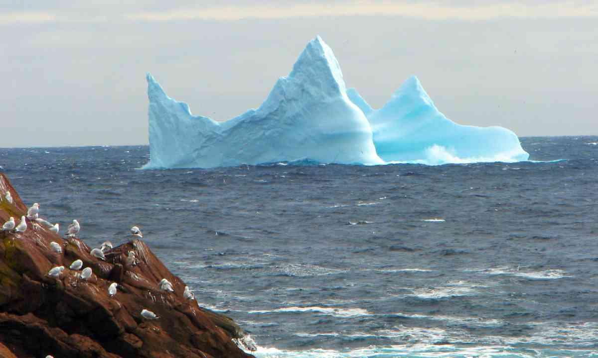 Newfoundland iceberg (Shutterstock)