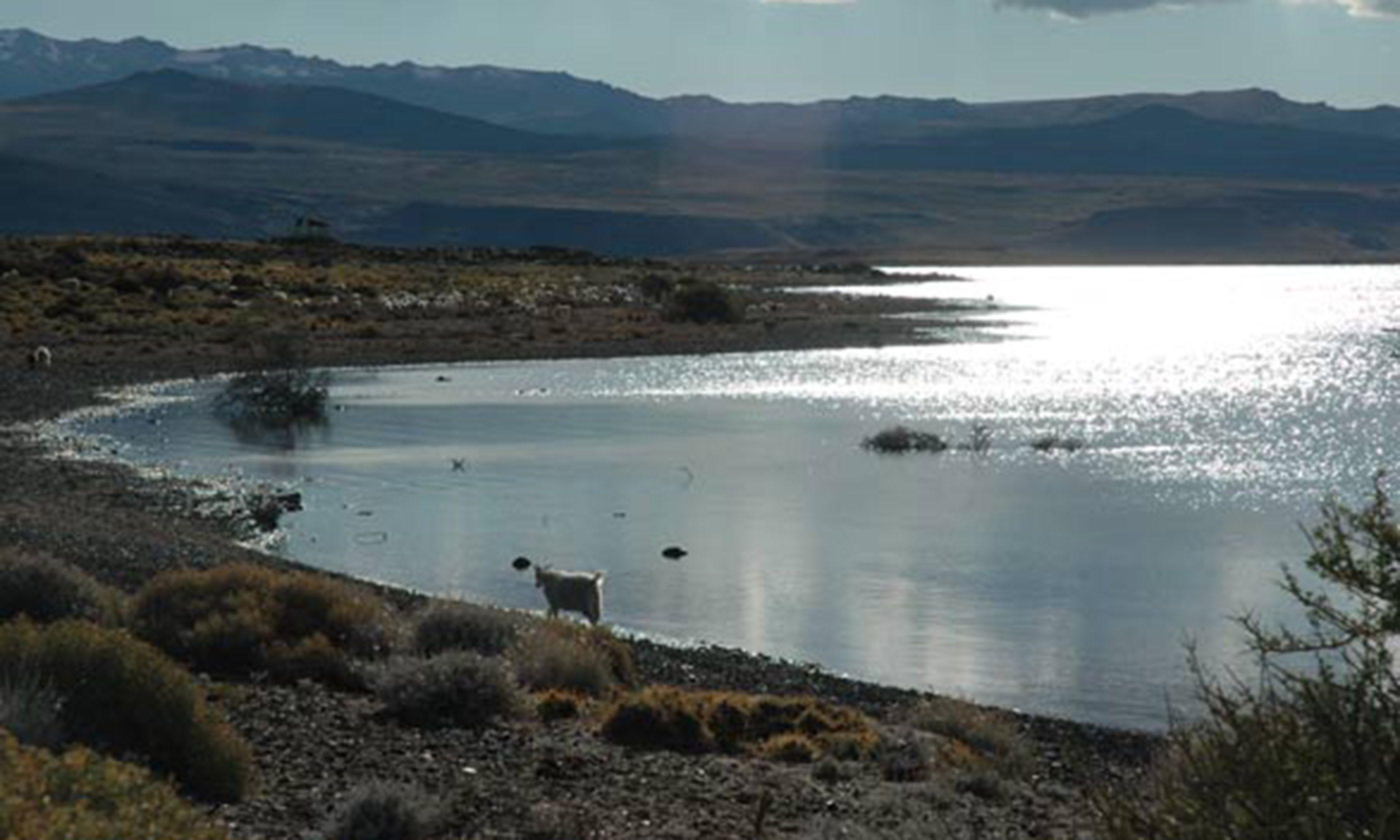 Laguna Blanca (Jason Spafford)