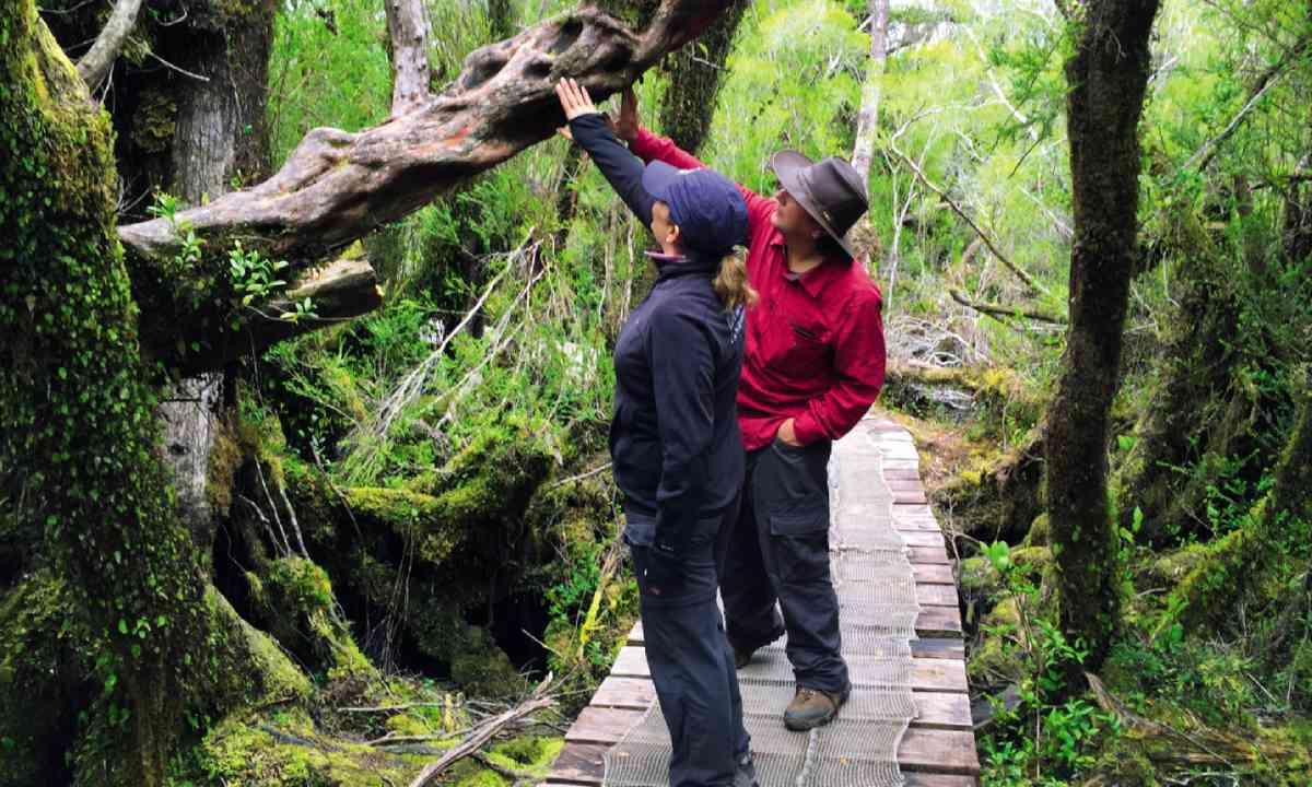 Chiloé National Park (Lyn Hughes)