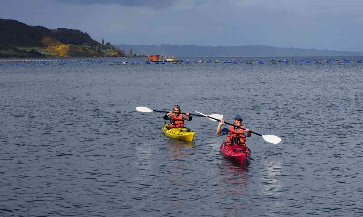 Kayaking on the coast (Simon Hayes/Tierra Chiloé)