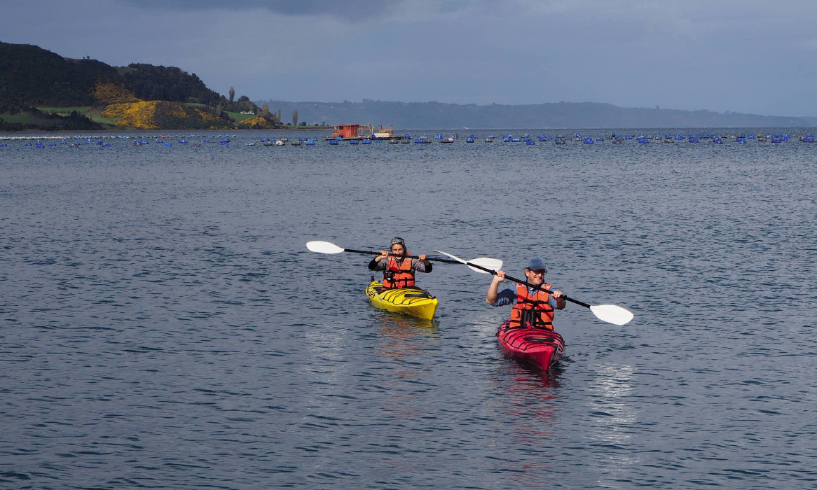 Kayaking on the coast (Simon Hayes/Tierra Chiloé)