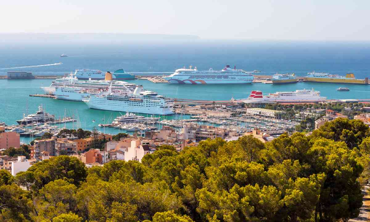 Palma port (Dreamstime)