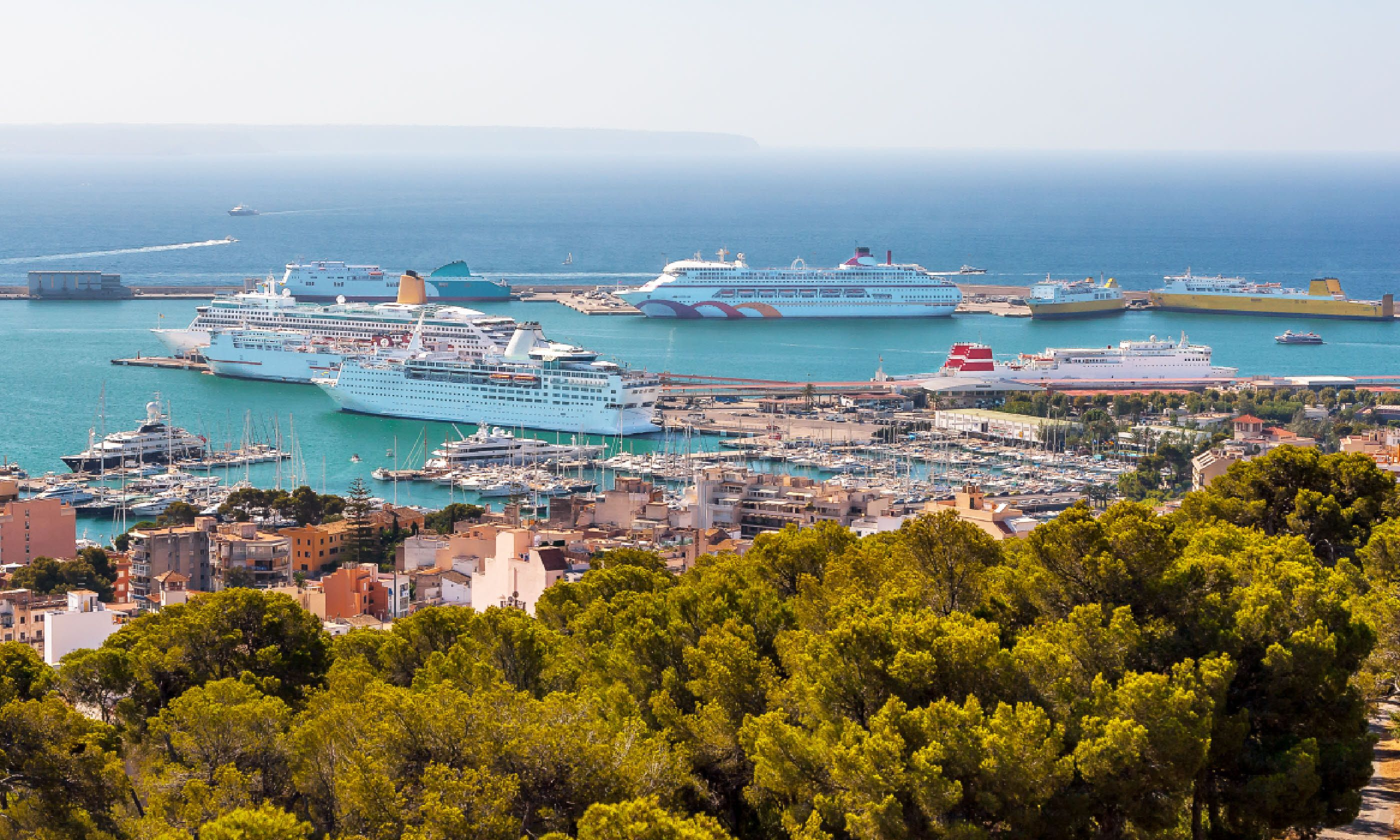 Palma port (Dreamstime)