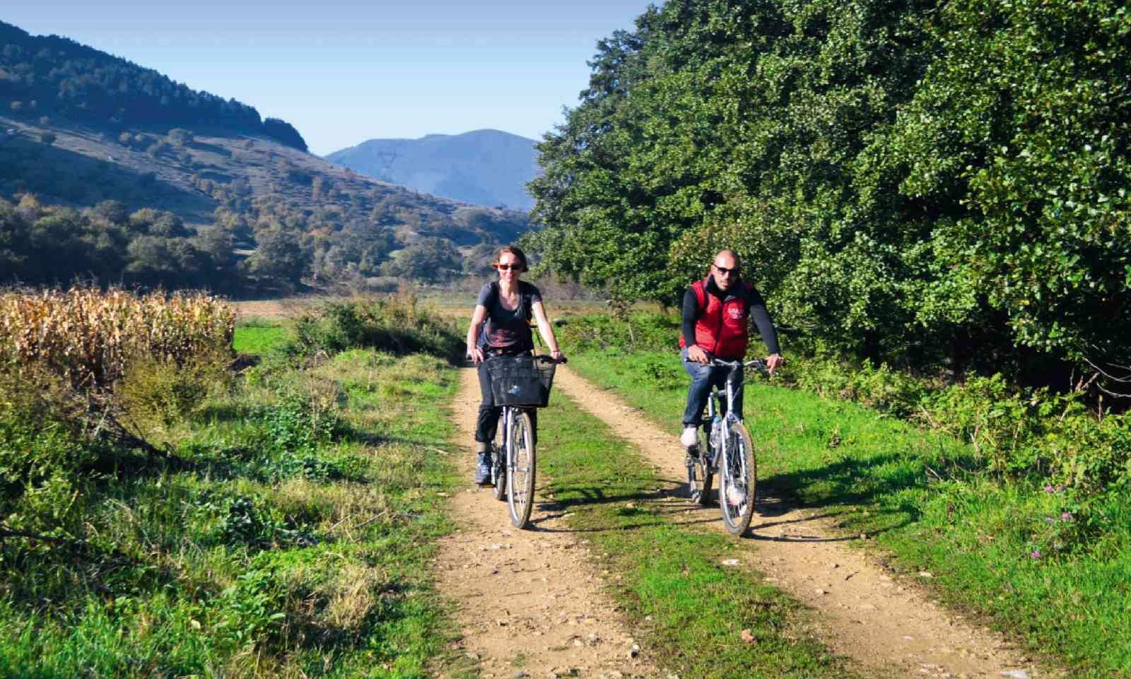 Cycling through the woodland (Nikos Kanellopoulos / Arcturos)