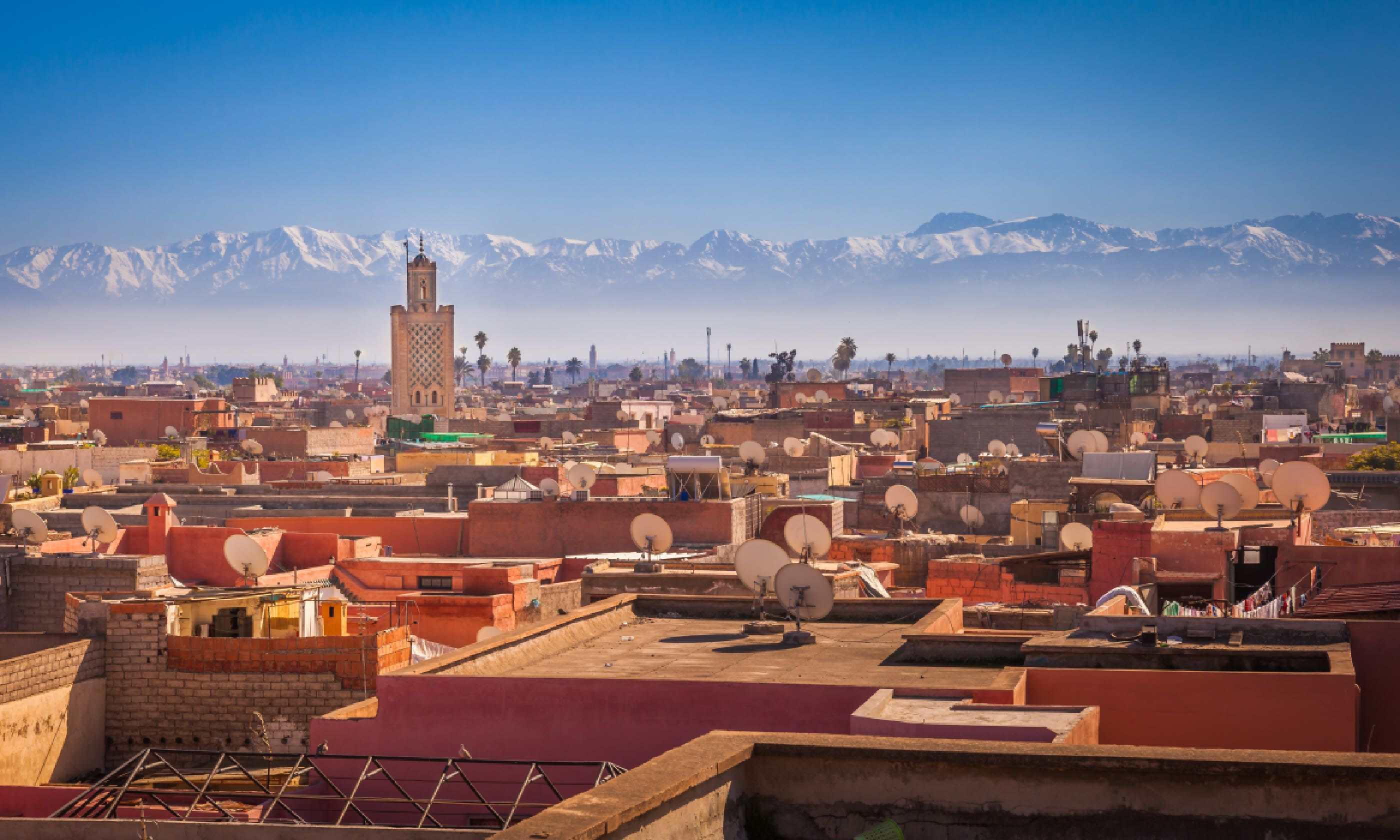 Marrakesh skyline and Atlas mountains (Shutterstock)