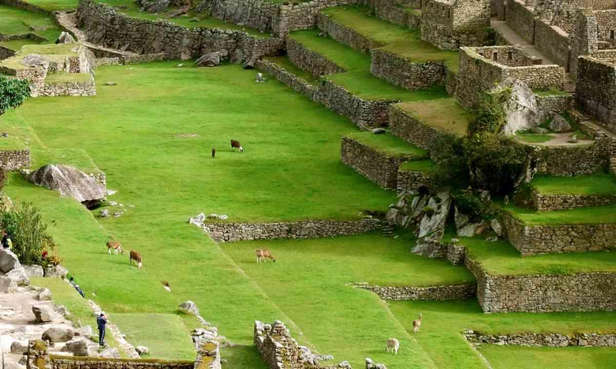 Looking down on Machu Picchu (Phoebe Greenacre)