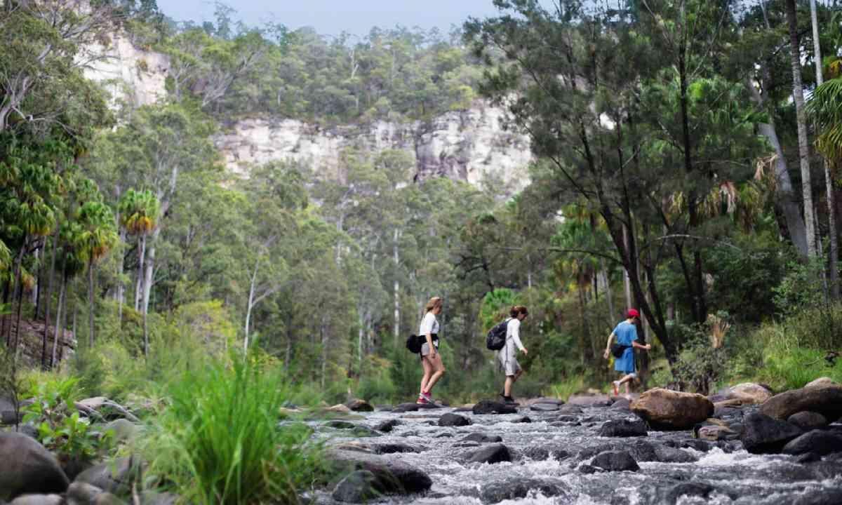 Crossing a Carnarvon creek (William Gray)
