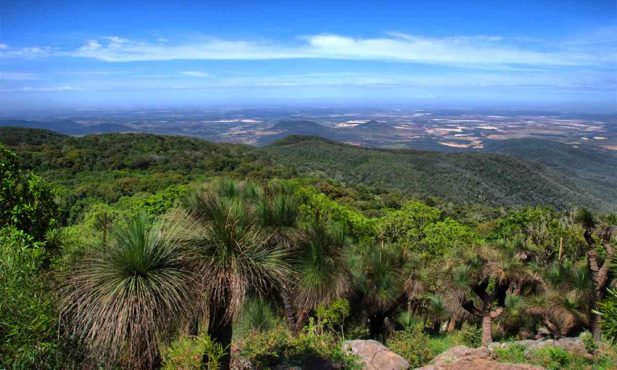 View from Mount Kingarow, Bunya Mountains (Shutterstock)