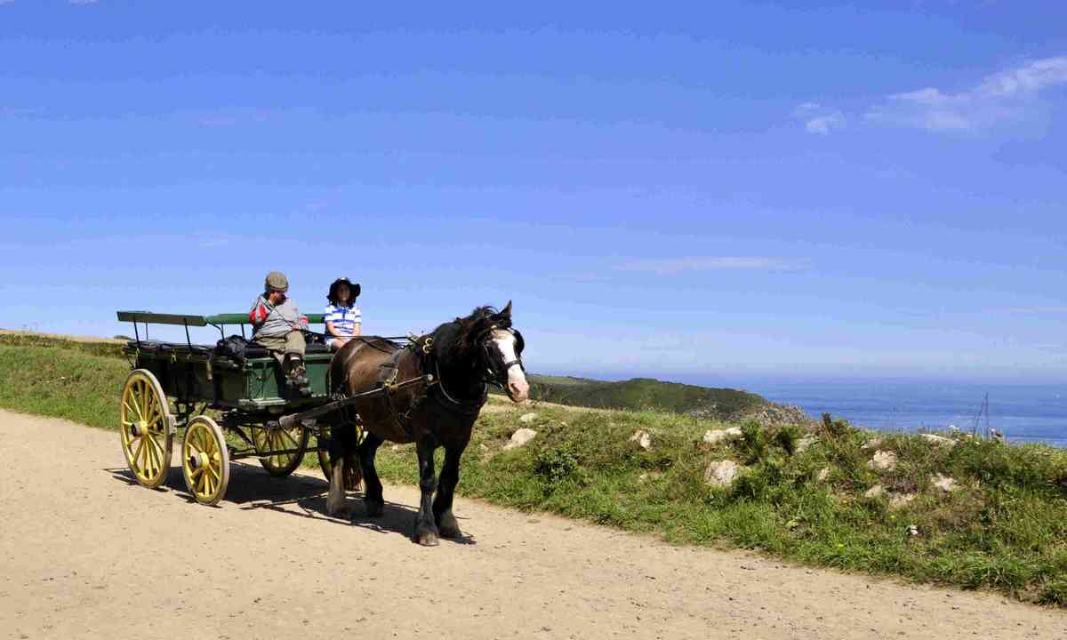 Horse and carriage in Sark (Dreamstime)