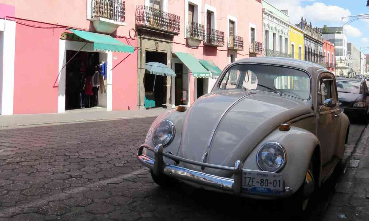 VW Beetle, Puebla (Hazel Plush)