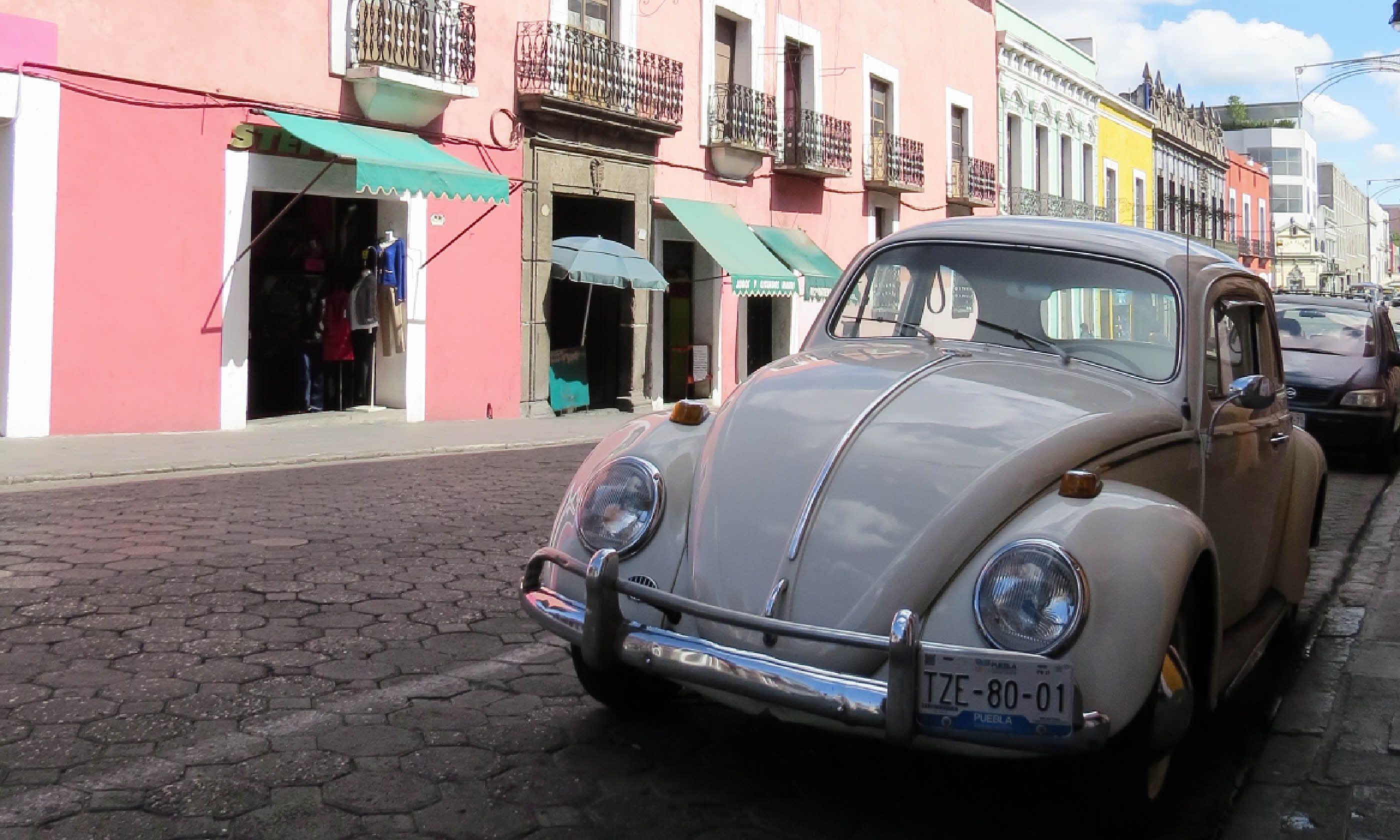 VW Beetle, Puebla (Hazel Plush)