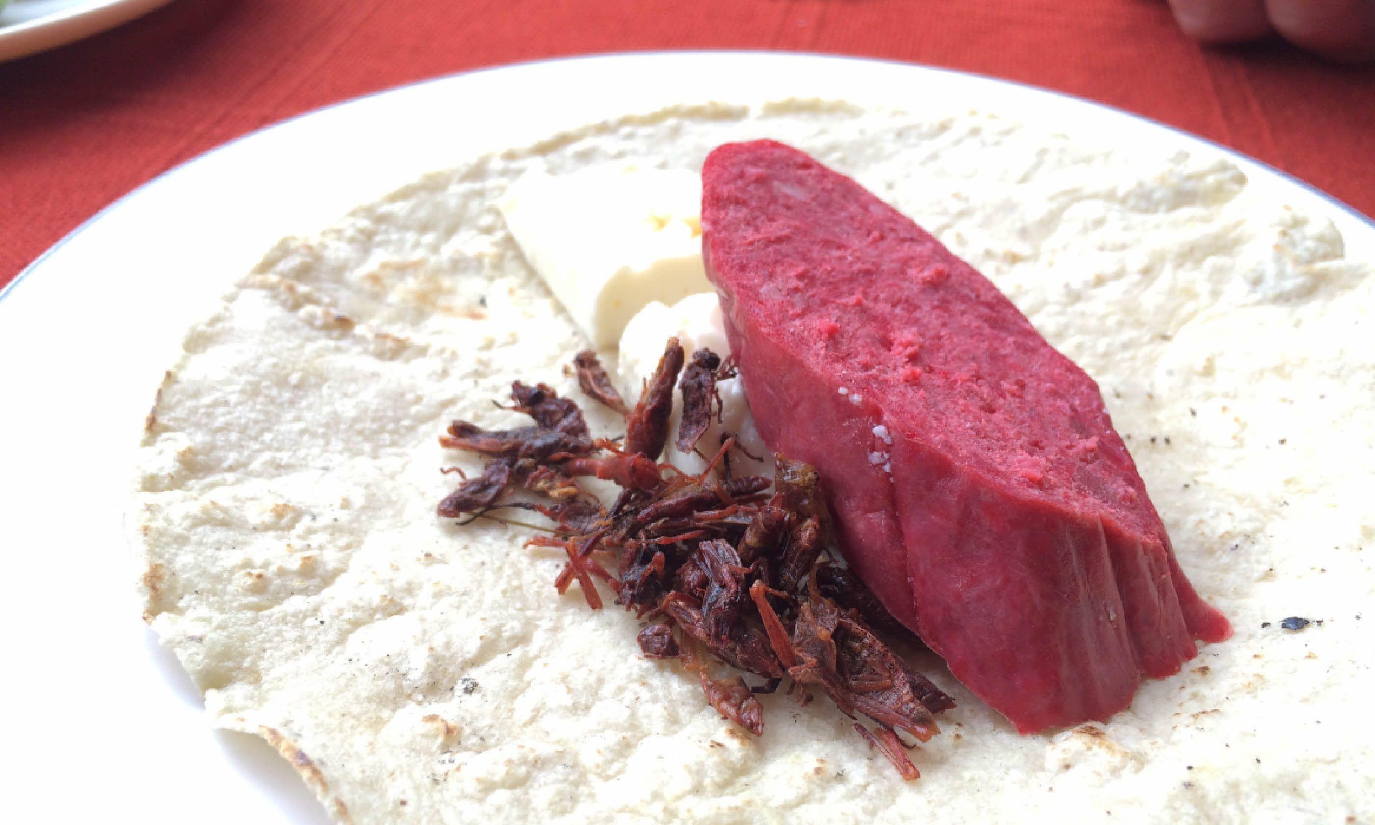 Chipolines taco (Hazel Plush)