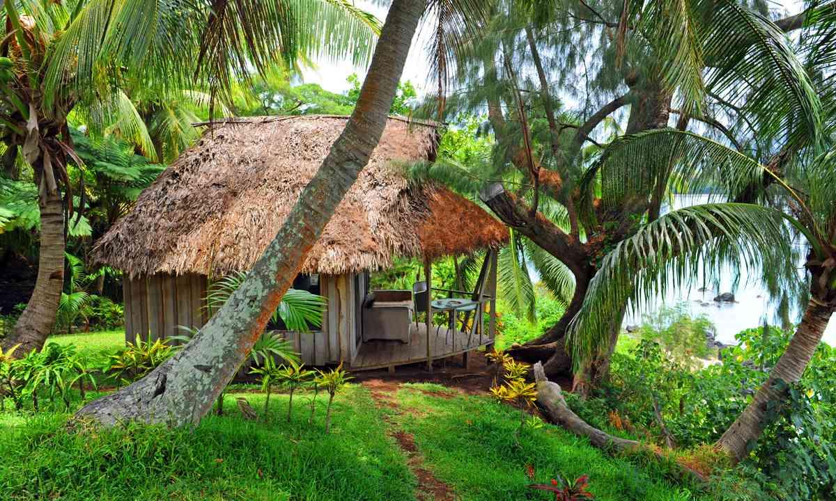 Traditional hut in Sydney Vanuatu