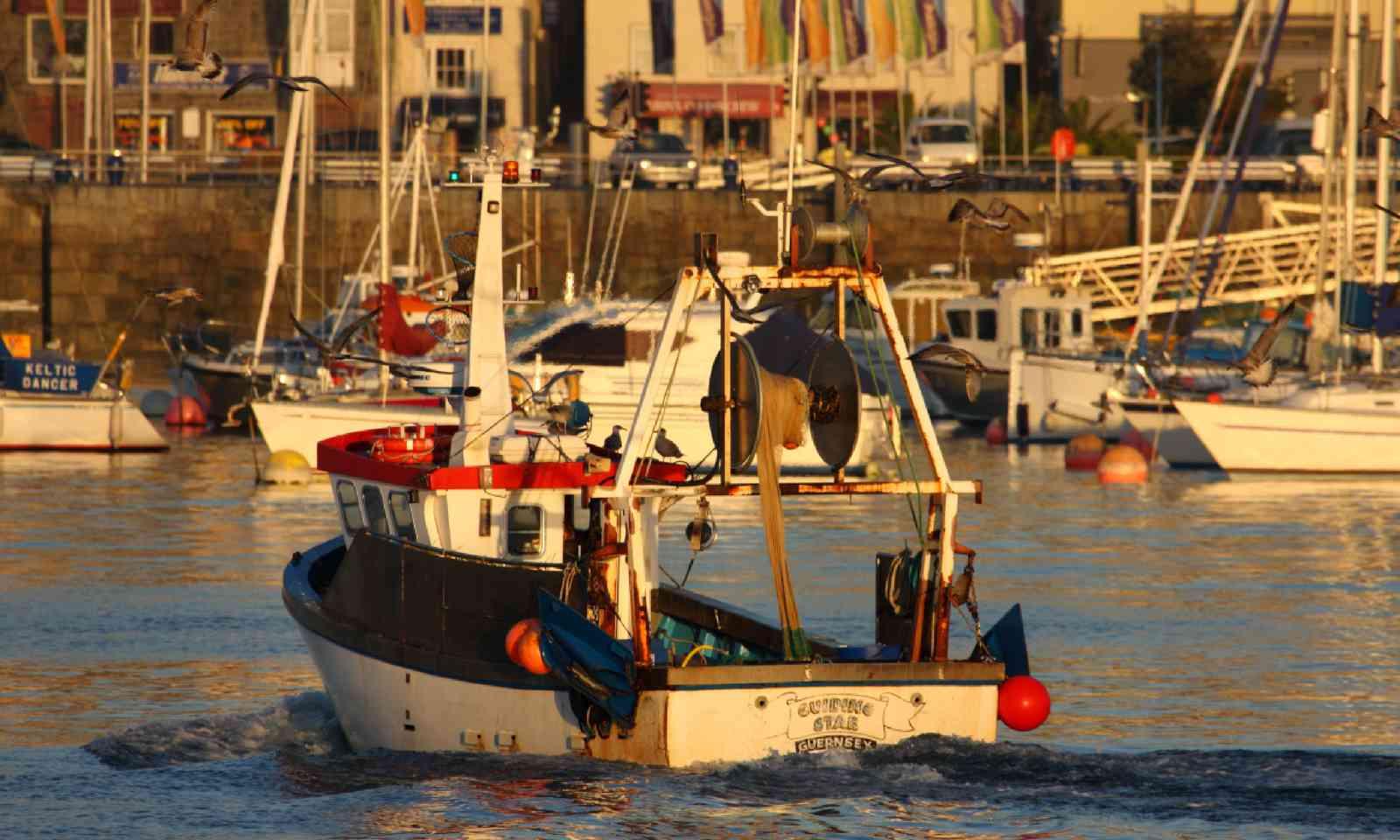 Guernsey fishing boat (Dreamstime)