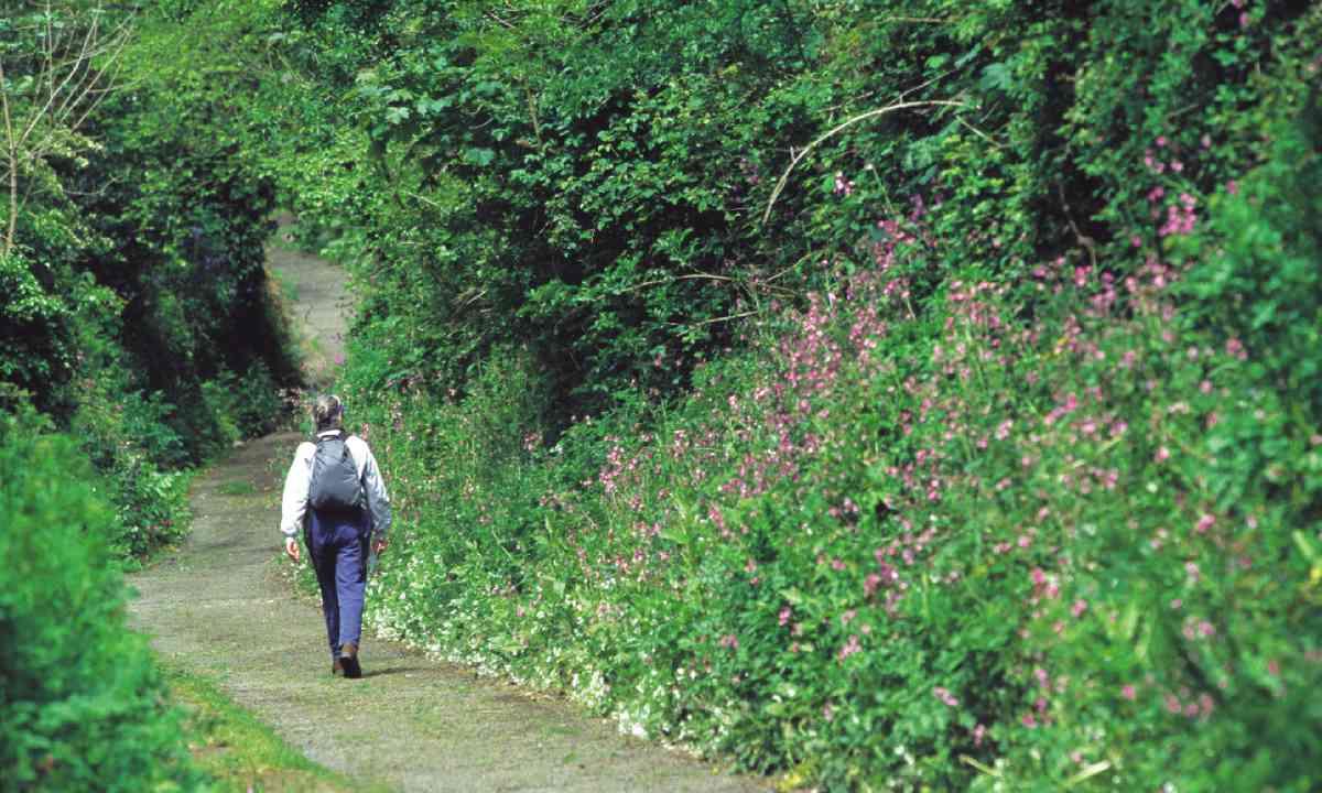 Walking on Guernsey (Visit Guernsey)