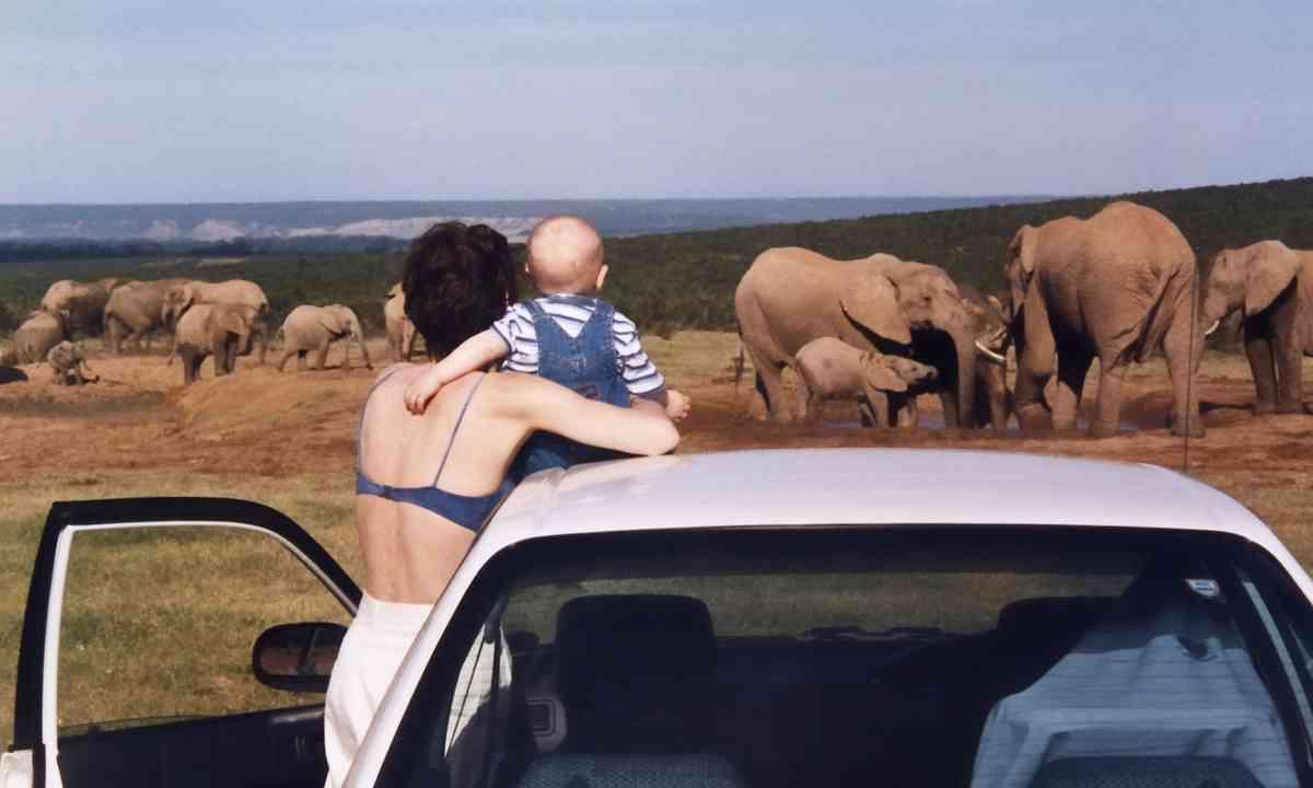 Babe watching elephants (Melanie Gow)