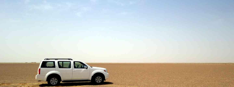 Driving in the desert, Oman (Hazel Plush)