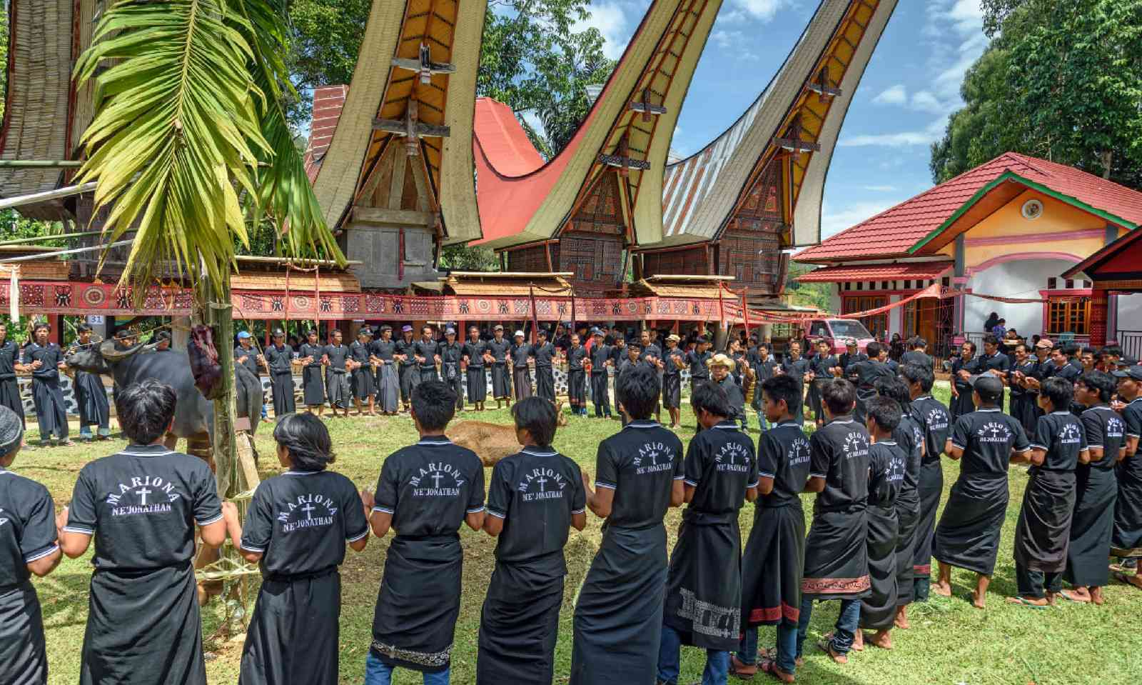 A funeral ceremony in Sulawesi (Shutterstock)