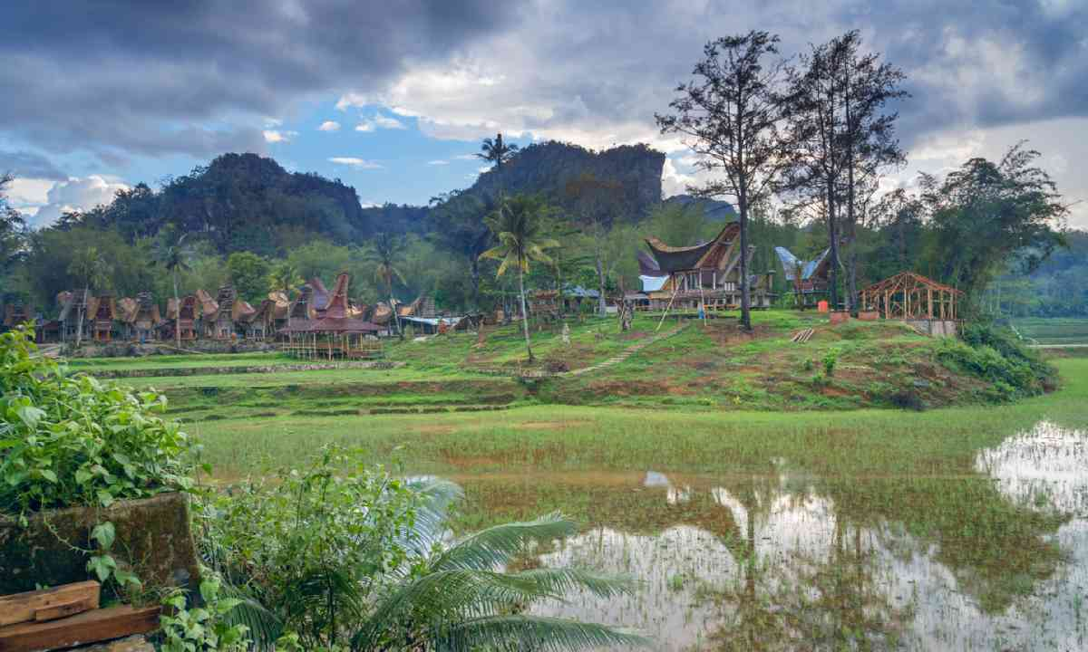 Tongkonan traditional village Kete Kesu (Shutterstock)