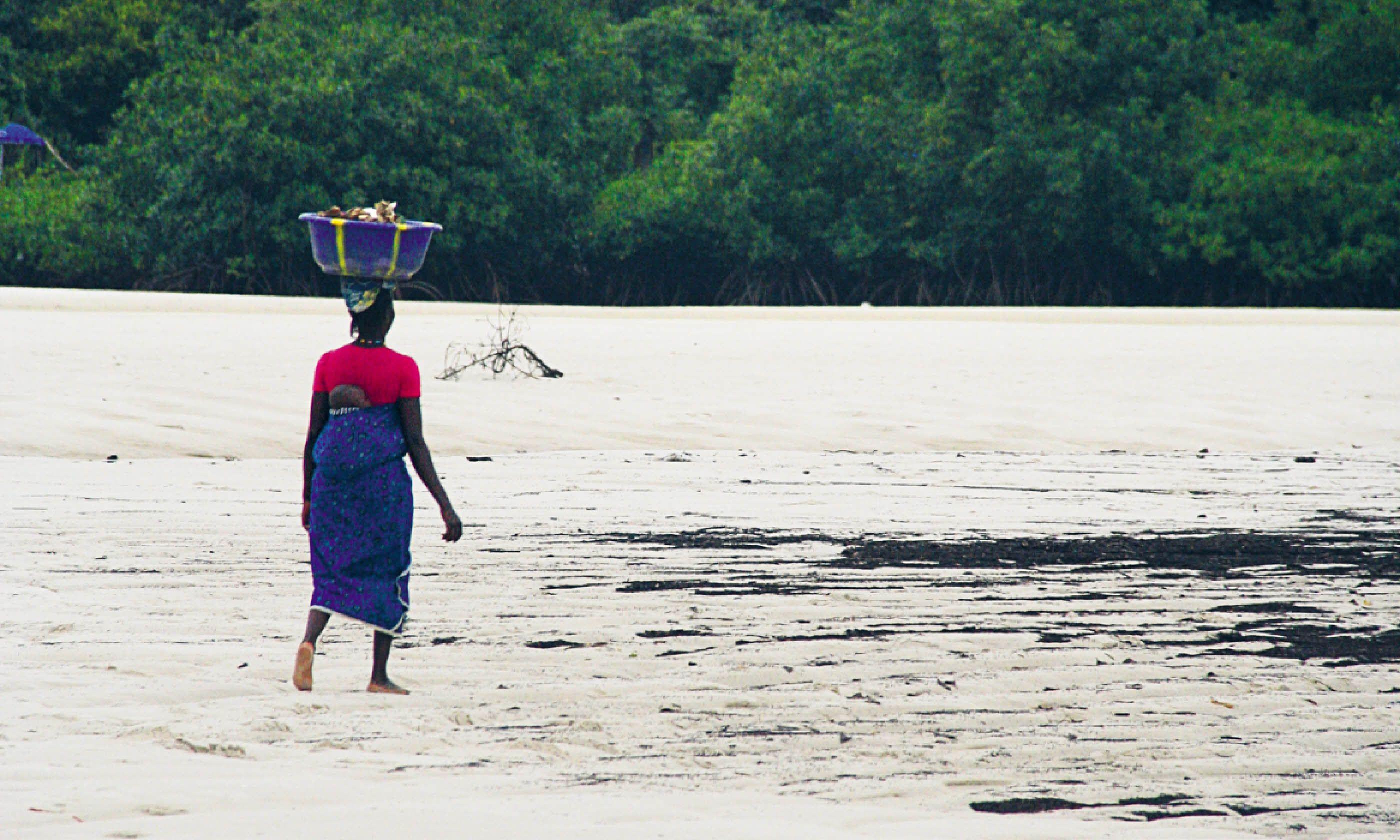 Sierra Leone can become an eco-tourism hotspot (Nick Redmayne)