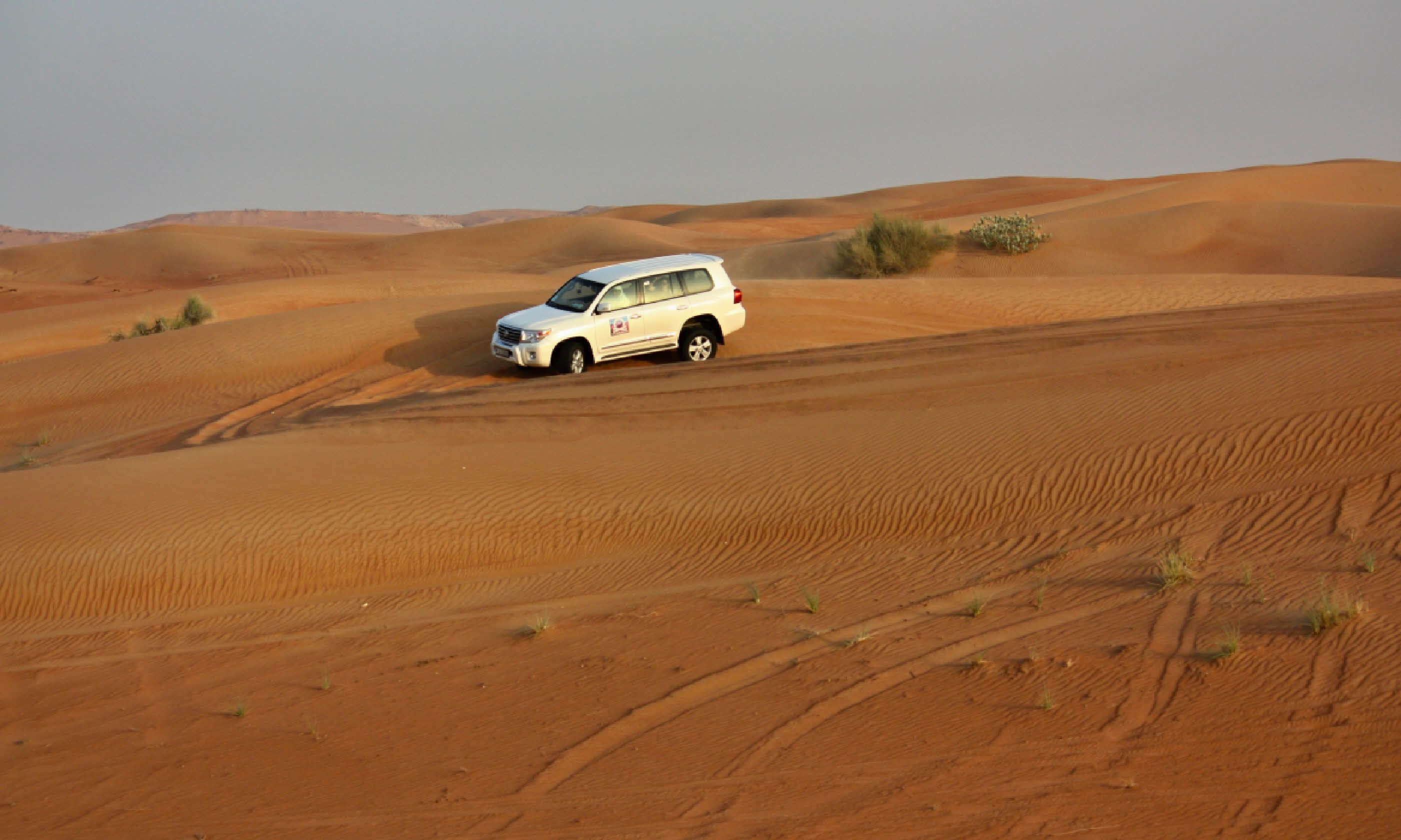 Dune safari in the Pink Rock Desert, Sharjah (Shutterstock)