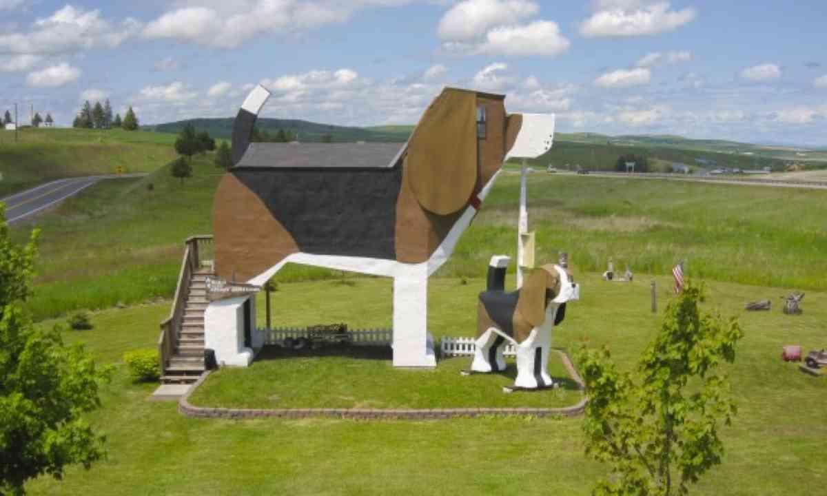 Dog Bark Park Inn (Dog Bark Park Inn)