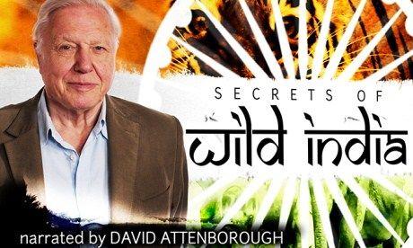 Secret India