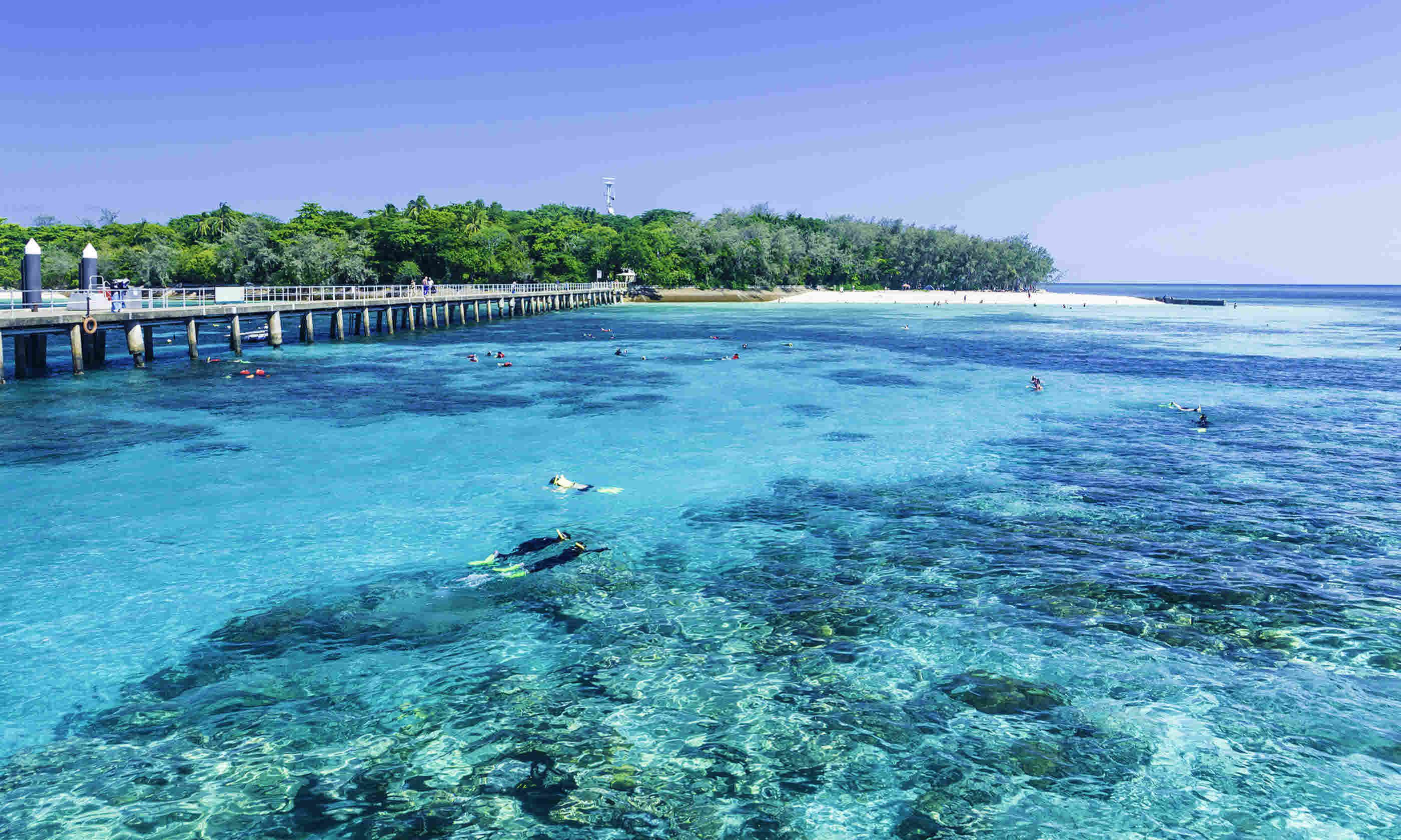 The Great Barrier Reef, Queensland, Australia (Dreamstime)