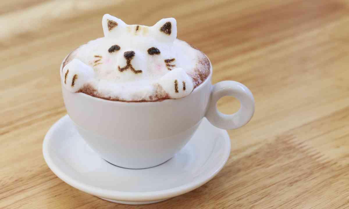 Kitty latte (Shutterstock.com)