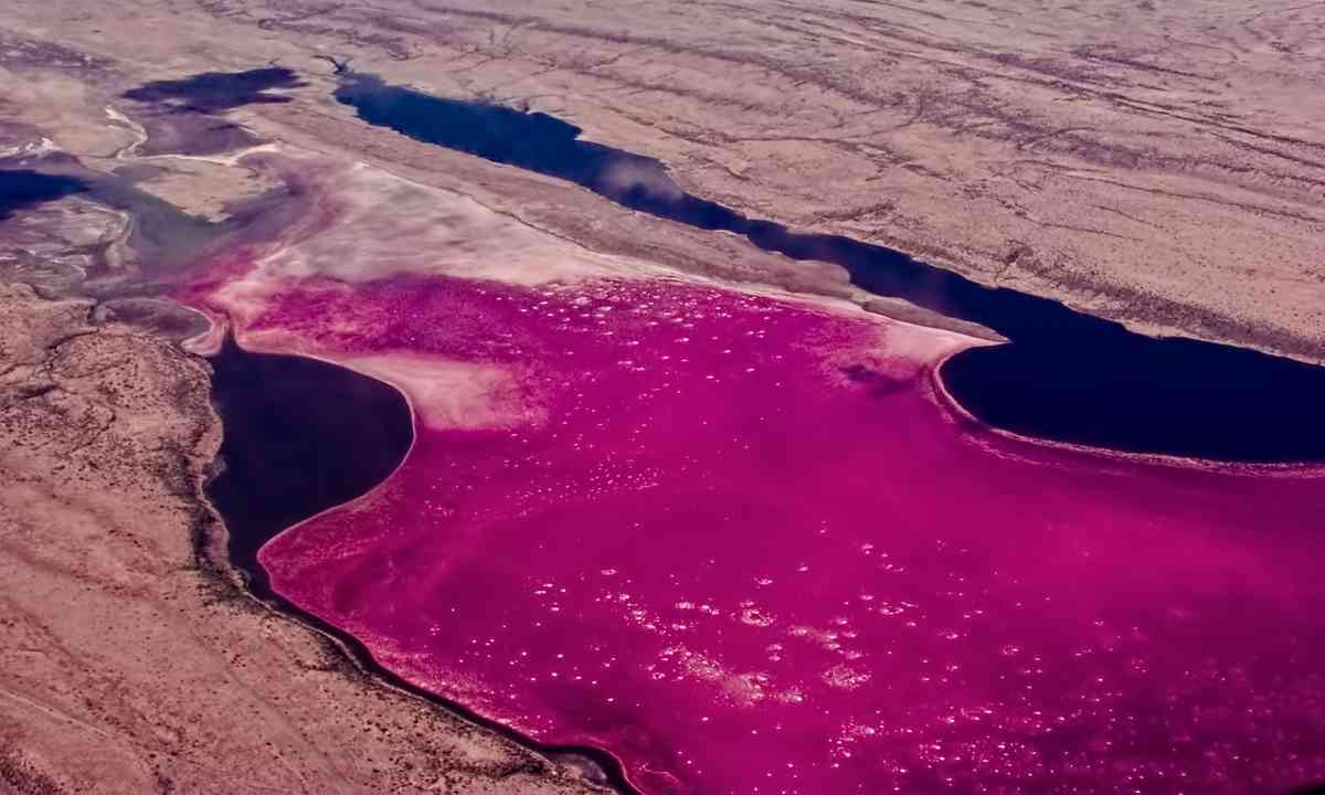 Lake Magadi (Shutterstock.com)