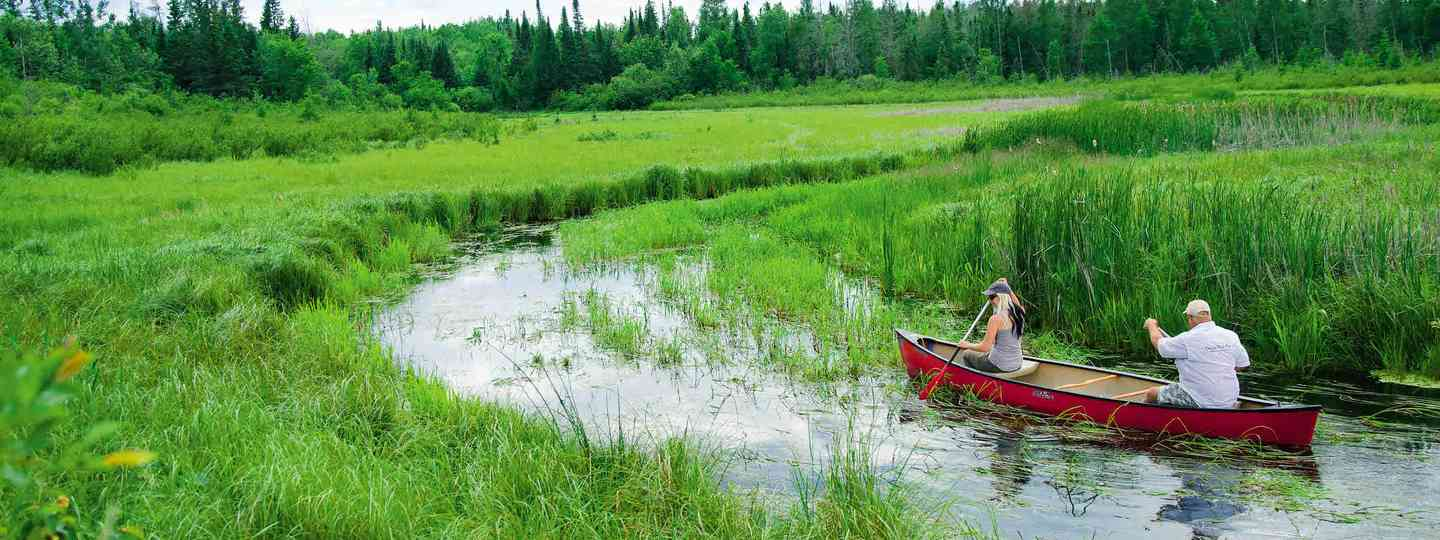 Canoeing the headwaters of Mississippi (Neil S Price)