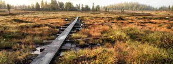 The Kungsleden trail in Autumn (Dreamstime)