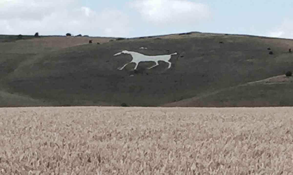 Alton Barnes Chalk Horse (Peter Moore)