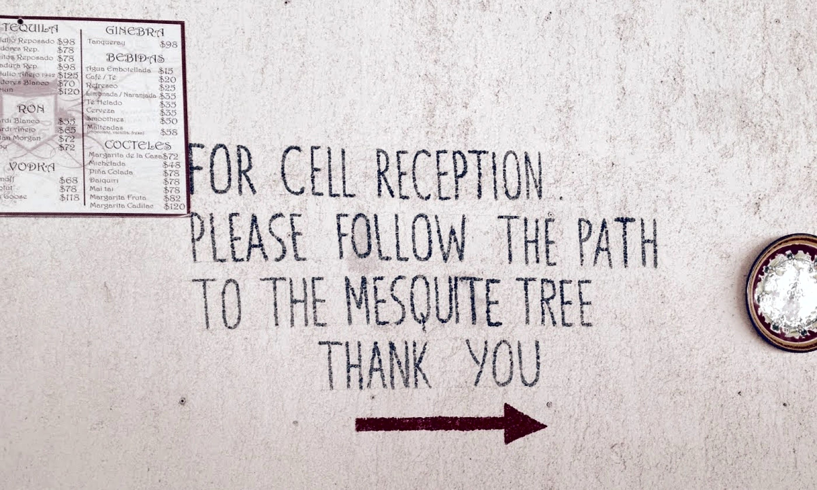 Cell signal directions (Aimee Nance)