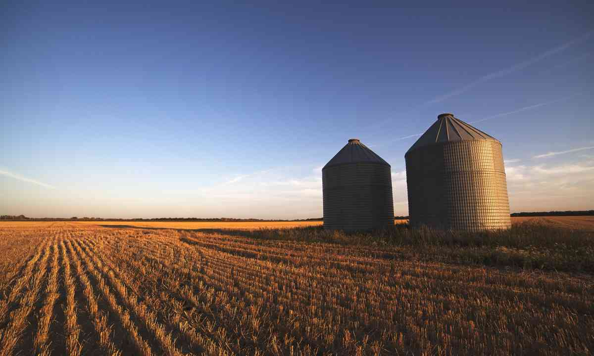 Grain silos on the Canadian prairie (Shutterstock.com)