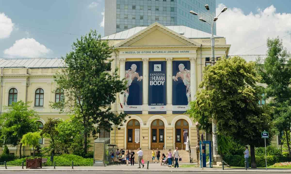 Bucharest Museum of Natural History (Shutterstock.com)