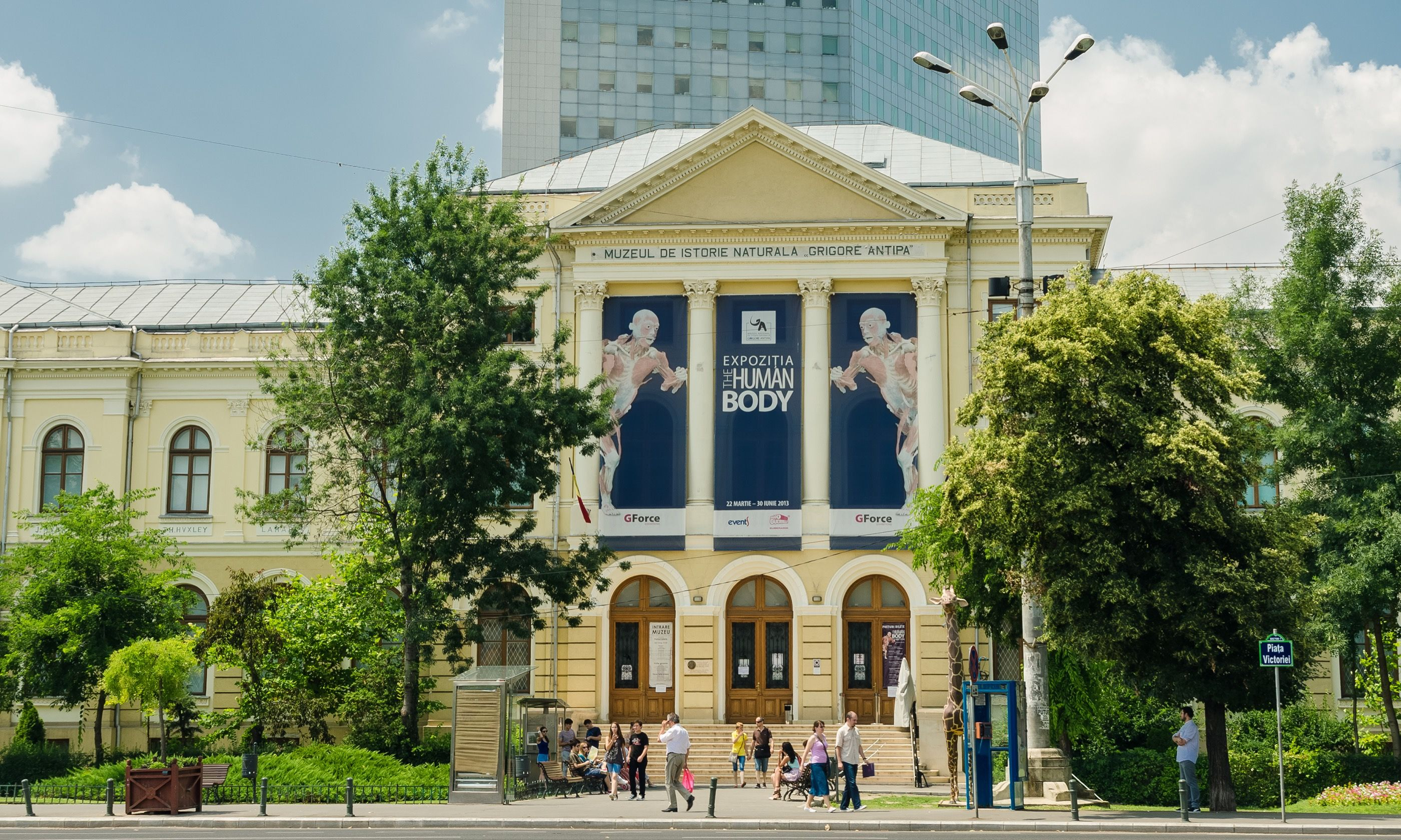 Bucharest Museum of Natural History (Shutterstock.com)