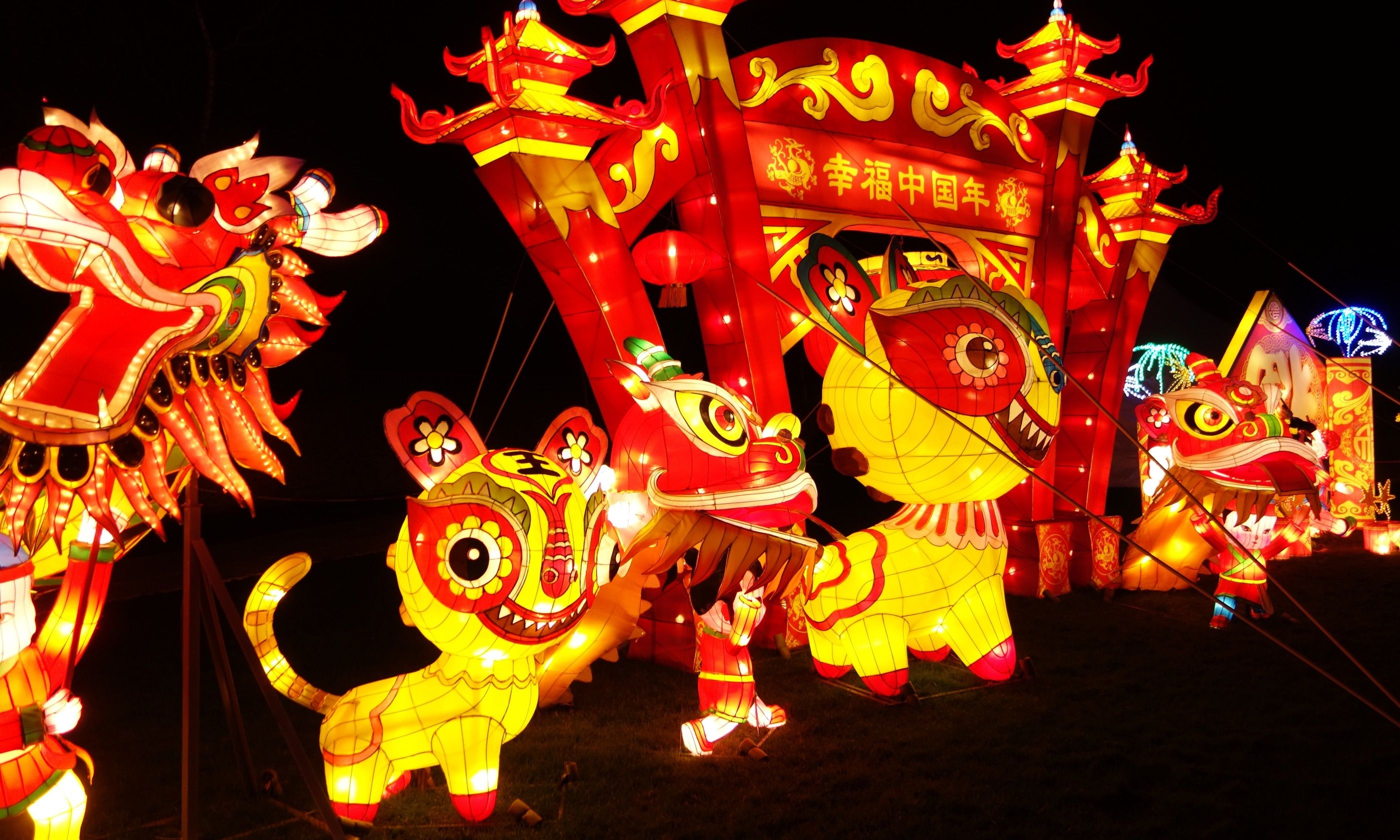 new year display peter moore - How To Celebrate Chinese New Year