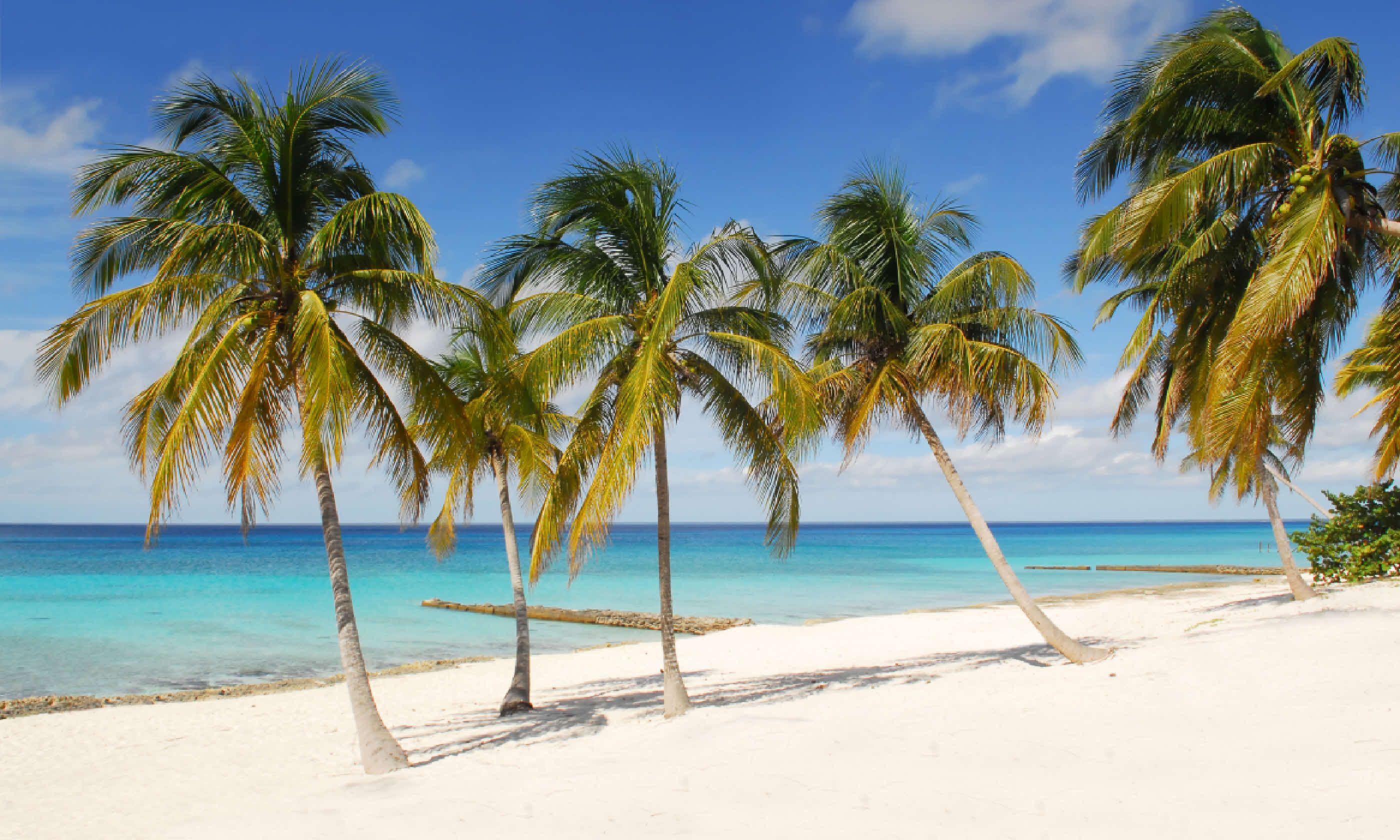 María la Gorda beach (Shutterstock)