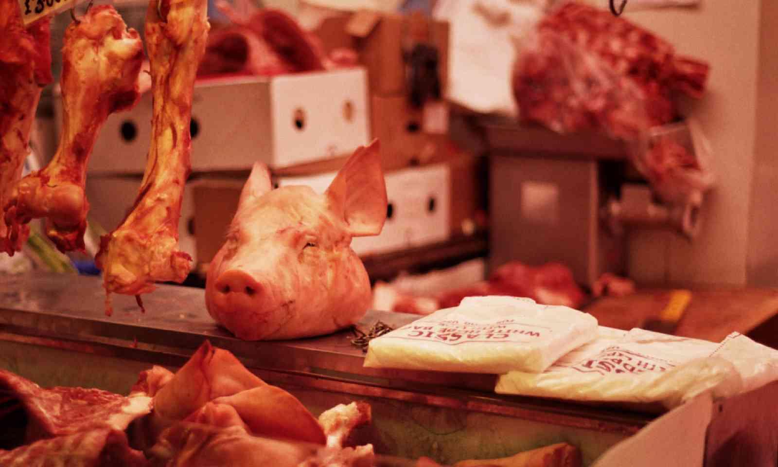 Pig's head in the butcher's (Flickr C/C: Walt Jabsco)