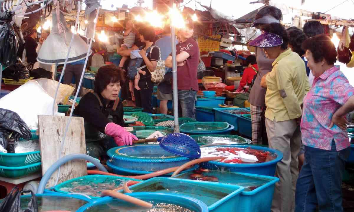 Fish market, South Korea (Shutterstock)
