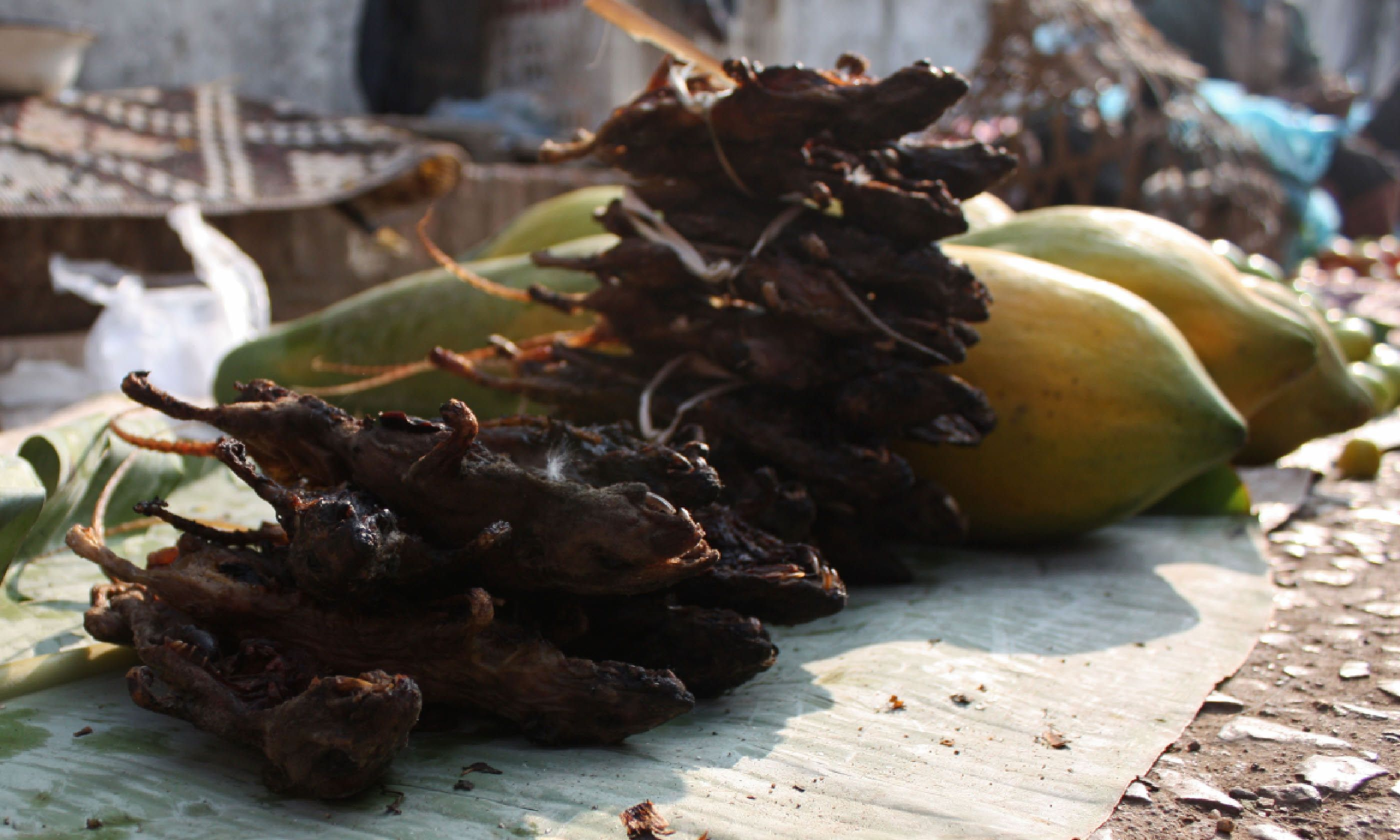 Rat snack (Flickr C/C: istolethetv)