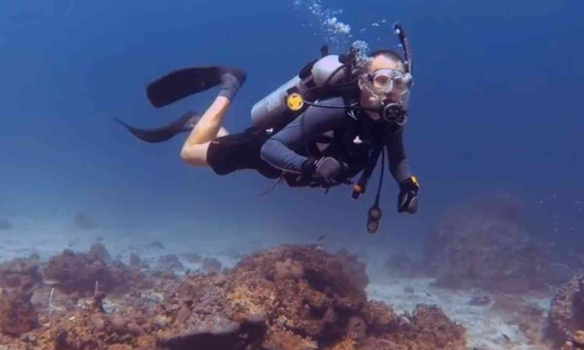 Snorkelling in paradise (Shutterstock.com)
