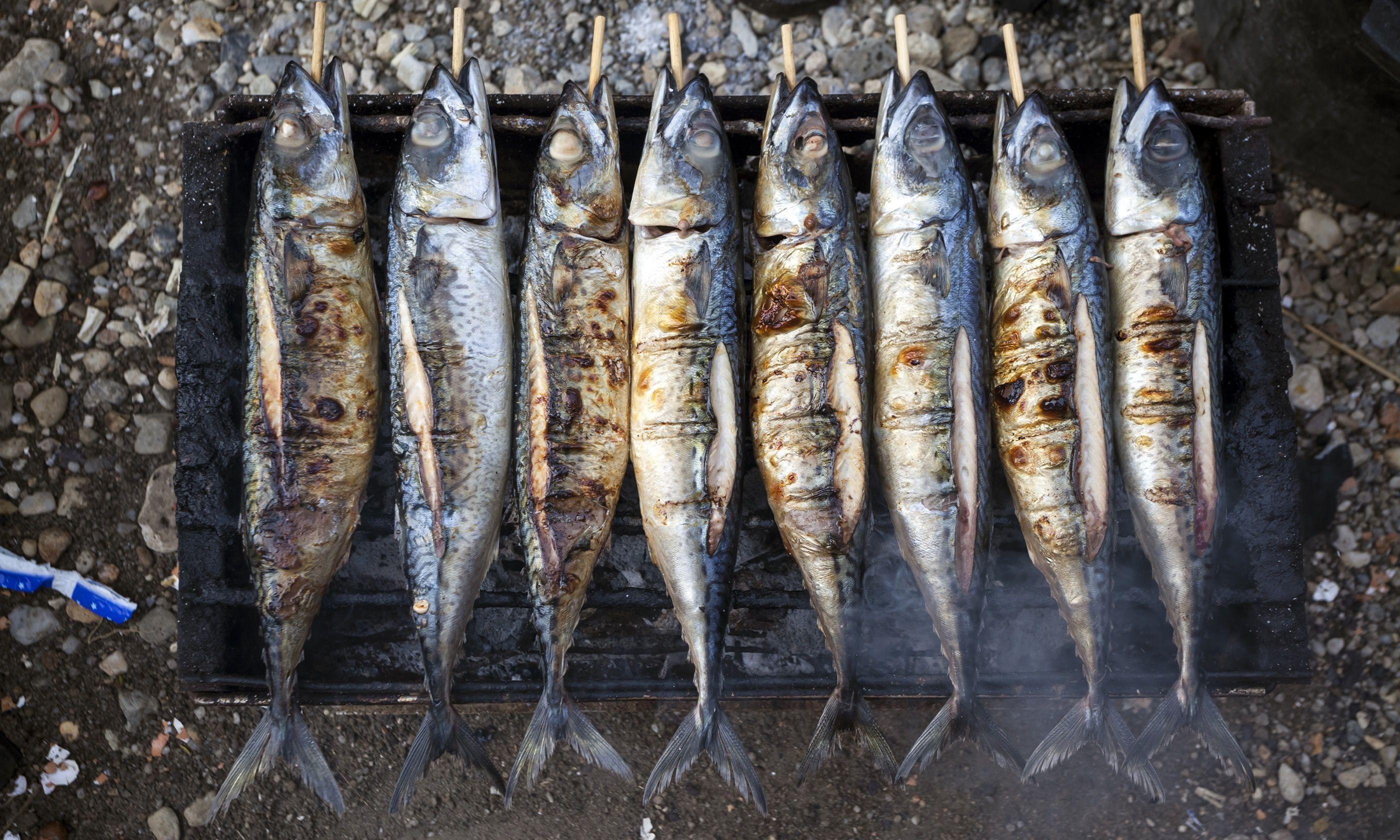 Grilled Mackerel (Shutterstock.com)