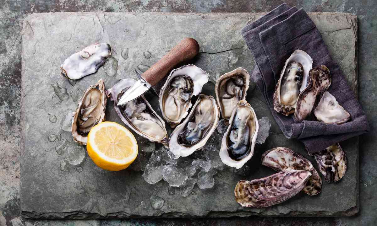 Oysters shucked on a stone plate (Shutterstock.com)