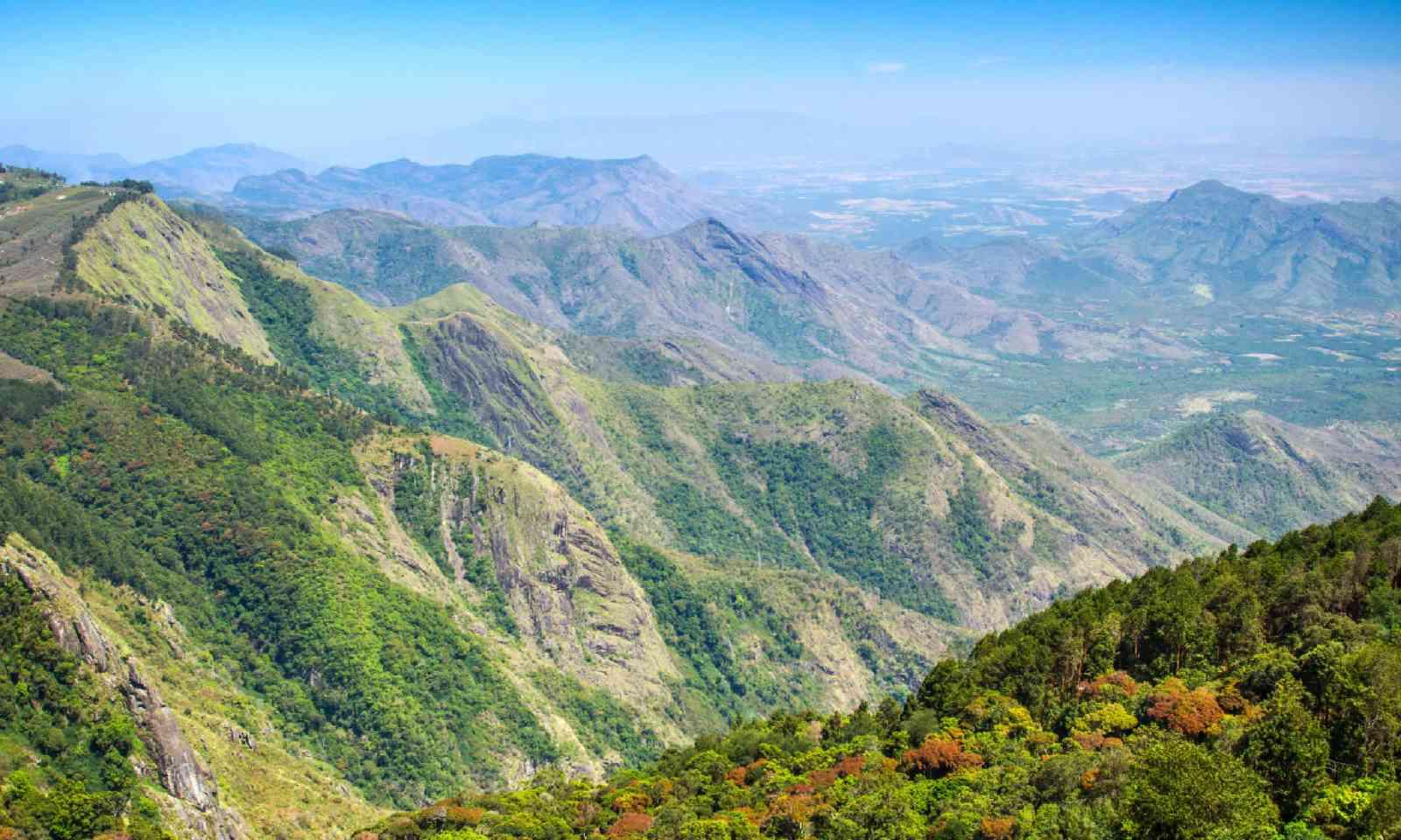 Kodaikanal, Tamil Nadu (Shutterstock)
