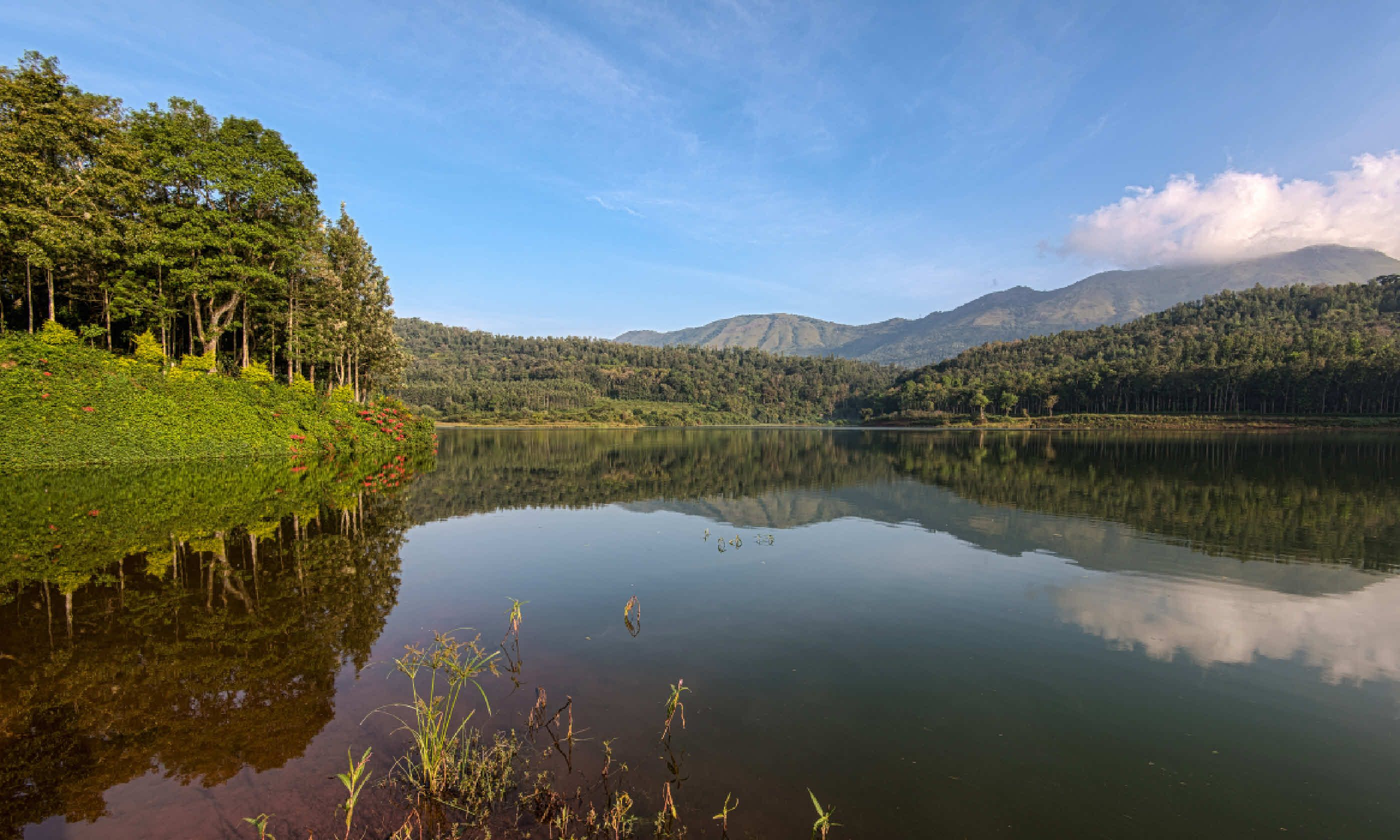 Hirekolale lake, near Chikmagalur, Karnataka (Shutterstock)