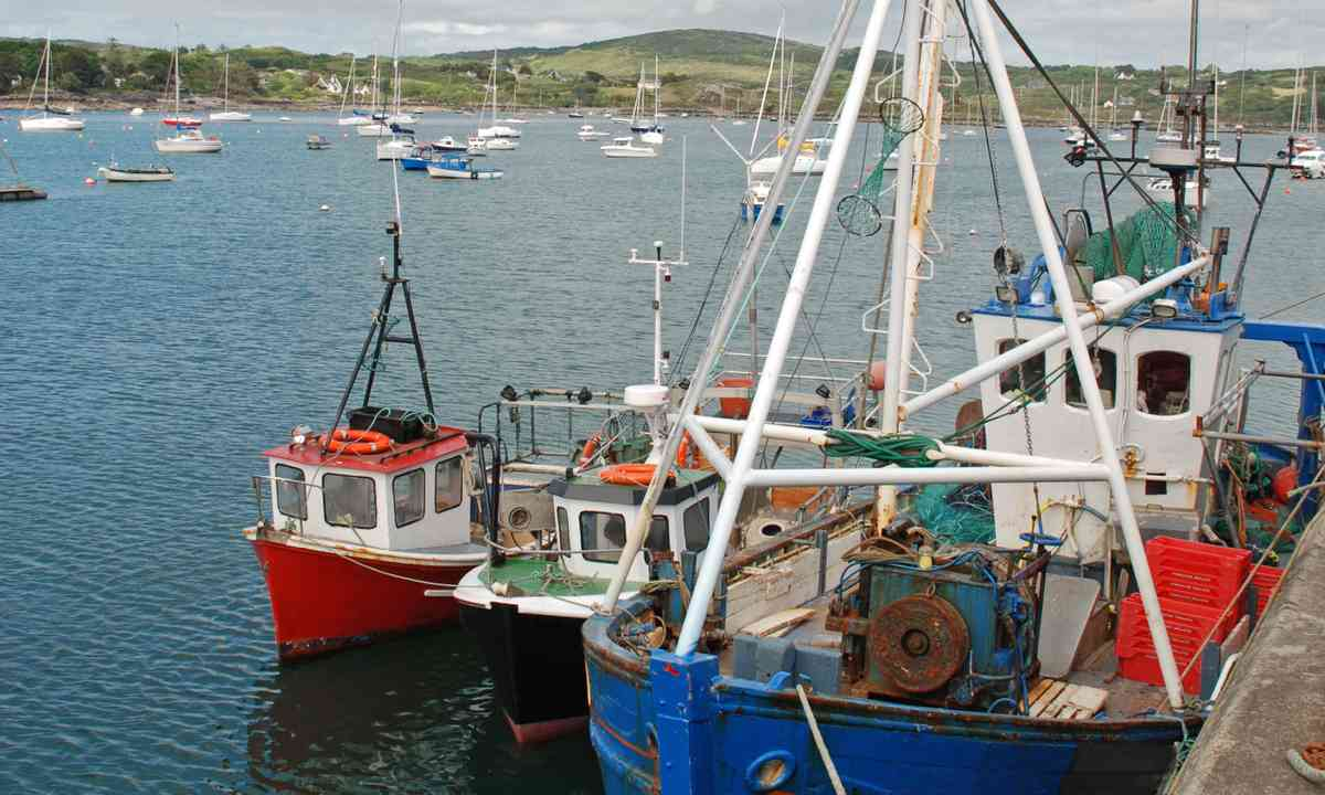 Fishing ships in Schull harbor (Shutterstock.com)
